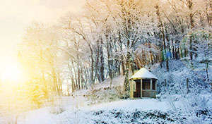 Lobhill bed and breakfast self catering winter offer devon dartmoor and okehampton