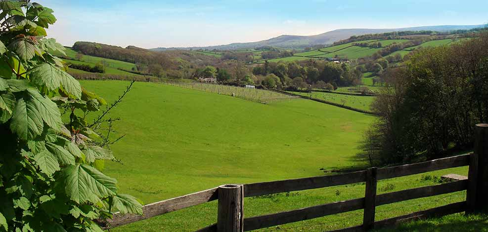Bed and breakfast boasts views of Dartmoor