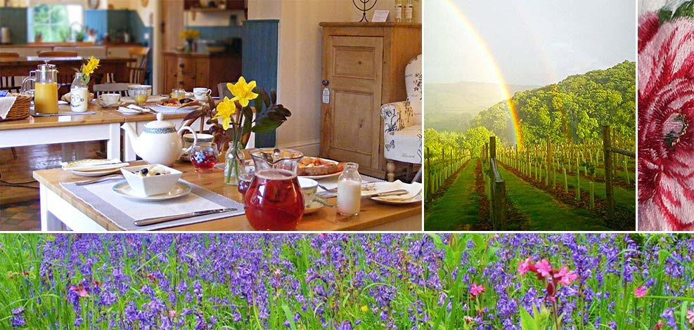 Cooked breakfast or lighter breakfast at Lobhill Farmhouse near Okehampton