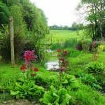Lobhill Farmhouse Pond