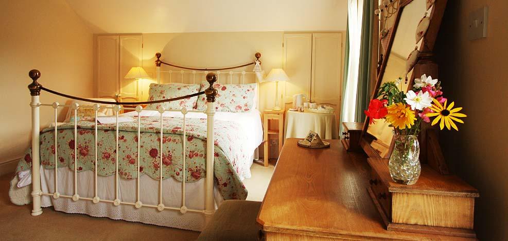 Devon Bed and Breakfast near Dartmoor