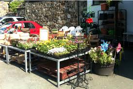 Tamar Valley local produce