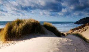Sand Dunes ay Holywell Bay