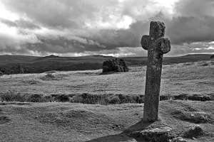 Pork Hill Dartmoor