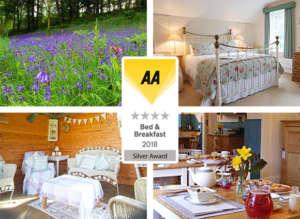 Award Winning AA 4 Star Bed Breakfast Devon