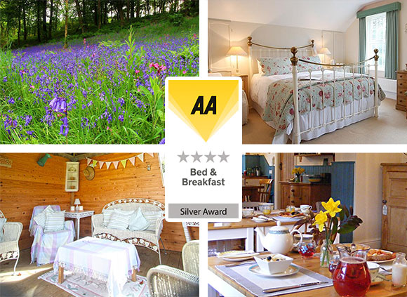Award Winning AA 4 Star Bed Breakfast Devon