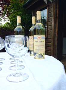 alder vineyard lobhill farmhouse bed and breakfast