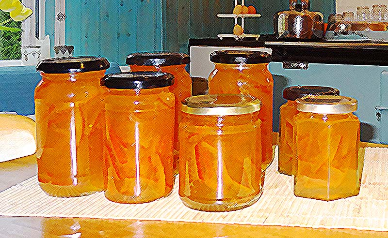 lobhill farmhouse homemade marmalade for sale